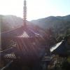 法華山一乗寺に行ってみました